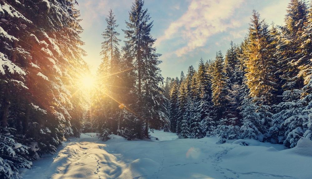 Vremenska prognoza: Sneg, kiša i jak vetar, temperatura do 12 stepeni