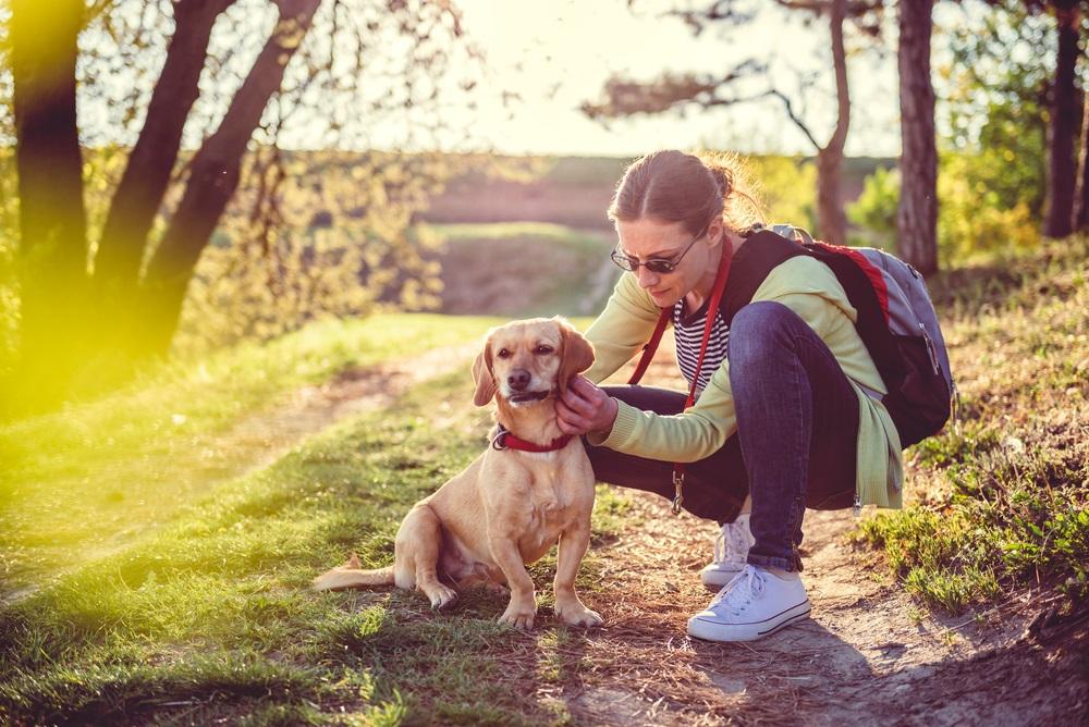 Neverovatno: Evo šta psi mogu da osete kod ljudi