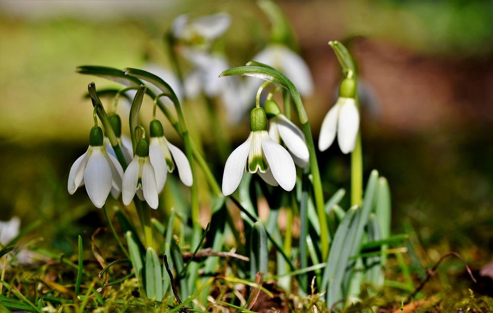 Vremenska prognoza: Sunčano i toplo, uživajte u prolećnih 22 stepena
