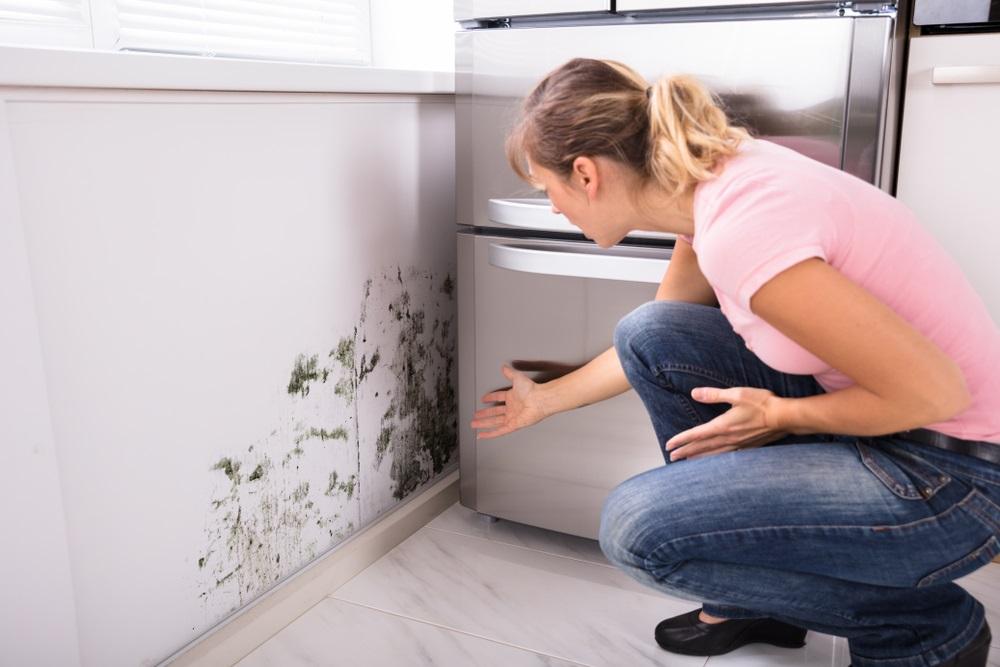 Rešite se buđi i fleka od vlage uz pomoć sredstava koje sigurno imate kod kuće (+ SAVETI kako da sprečite njihov nastanak)