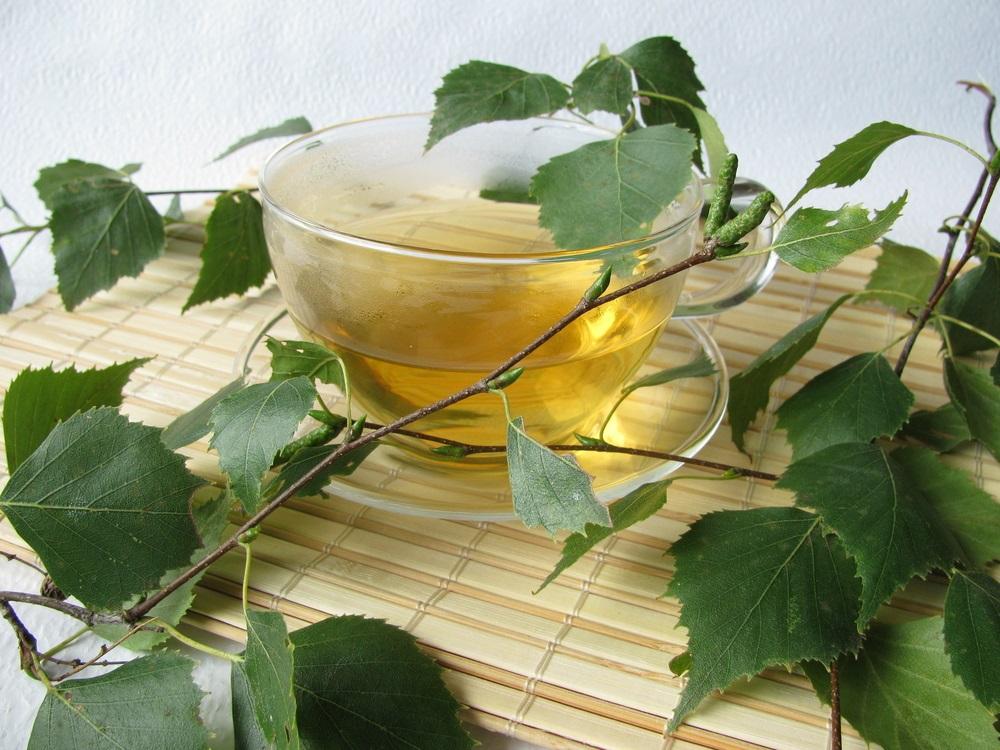 Čaj od breze – narodni eliksir za lečenje mnogih bolesti (+RECEPT)