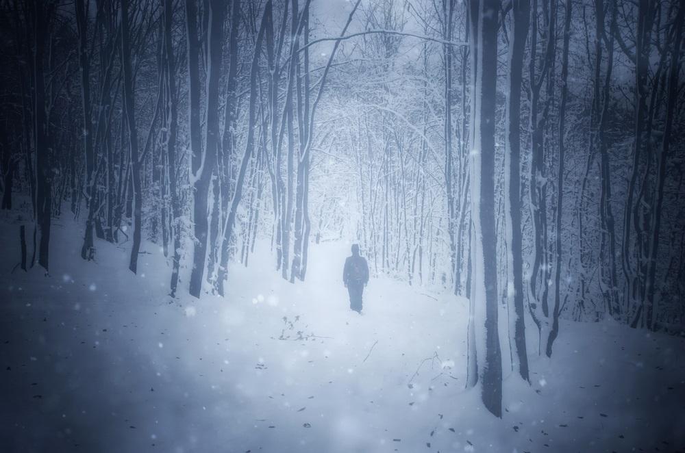 Sjajna ideja jednog tate: Ledeni dvorac u Prokuplju (FOTO)