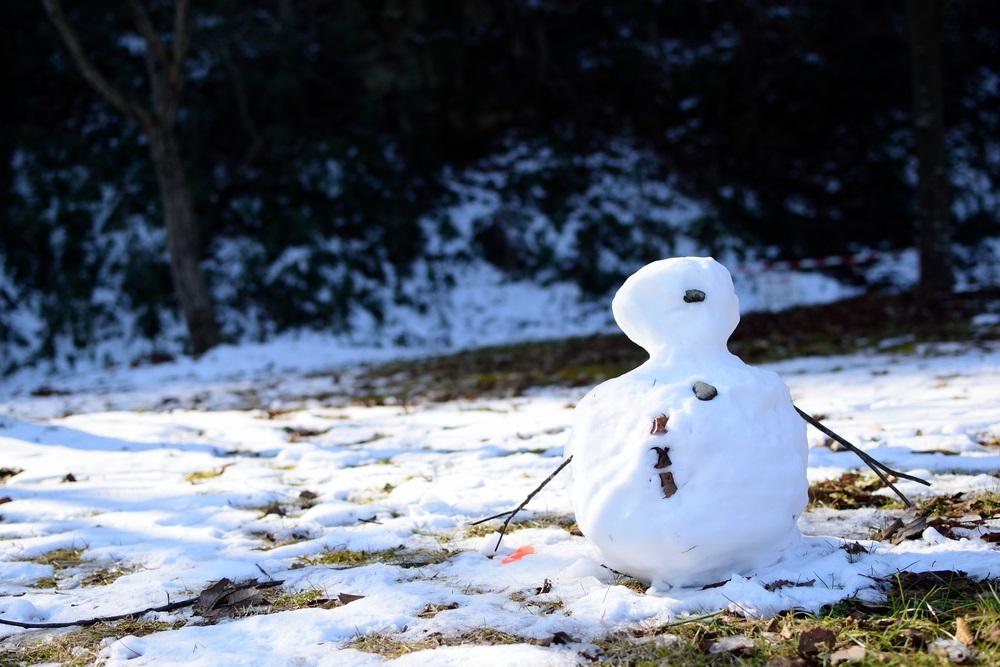 Vemenska prognoza: Ujutru poledica, preko dana prolećna temperatura