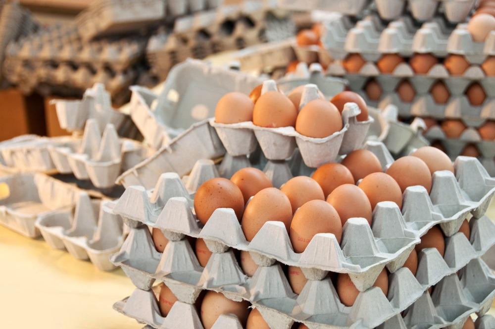 Nova pravila: U Srbiji će se prodavati samo jaja A klase, a ova oznaka značiće da su jaja organska