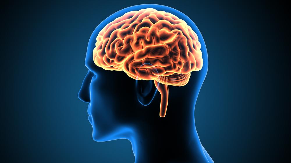 Naučnici tvrde: Ljudski mozak živi i nakon prestanka rada srca