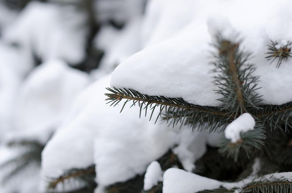 Stižu nove padavine, upozorenje na povećanje snežnog pokrivača
