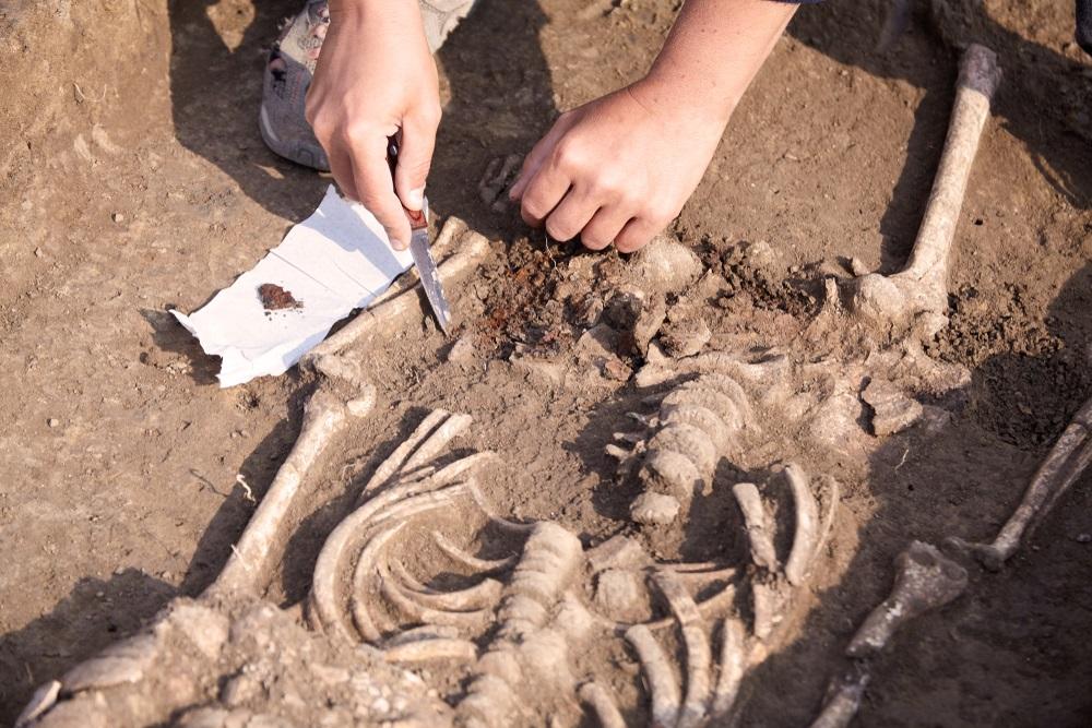 Pronađena nova vrsta drevnog čoveka, evo šta su naučnici otkrili (FOTO, VIDEO)
