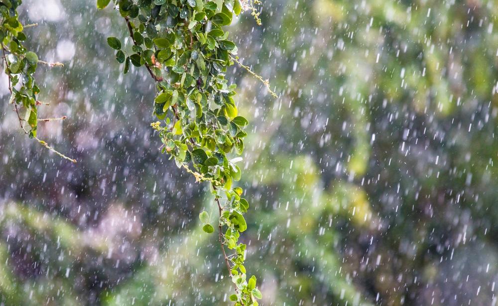 Vremenska prognoza: Danas pljuskovi i grmljavina, evo gde se očekuje najviše padavina