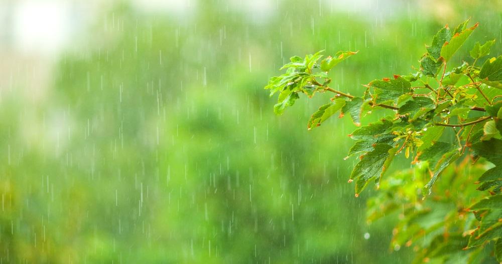 Još jedan kišoviti dan, temperatura do 18 stepeni