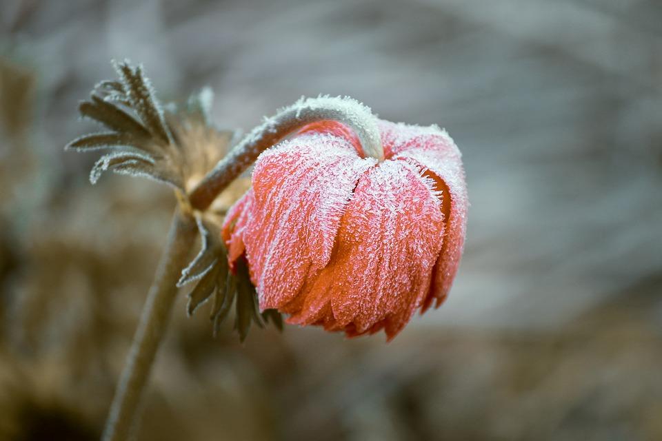 Kao da nije maj: Hladno, na planinama sneg, a evo kada se očekuje razvedravanje